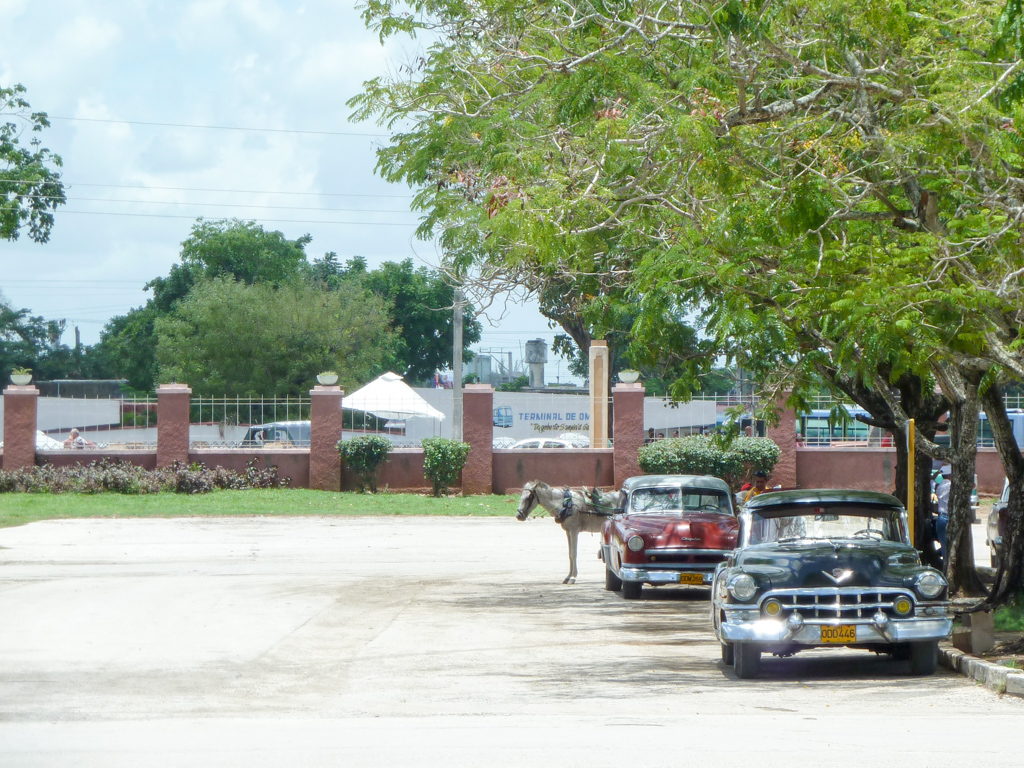 Kubas Transportmittel, Pferde und alte Autos