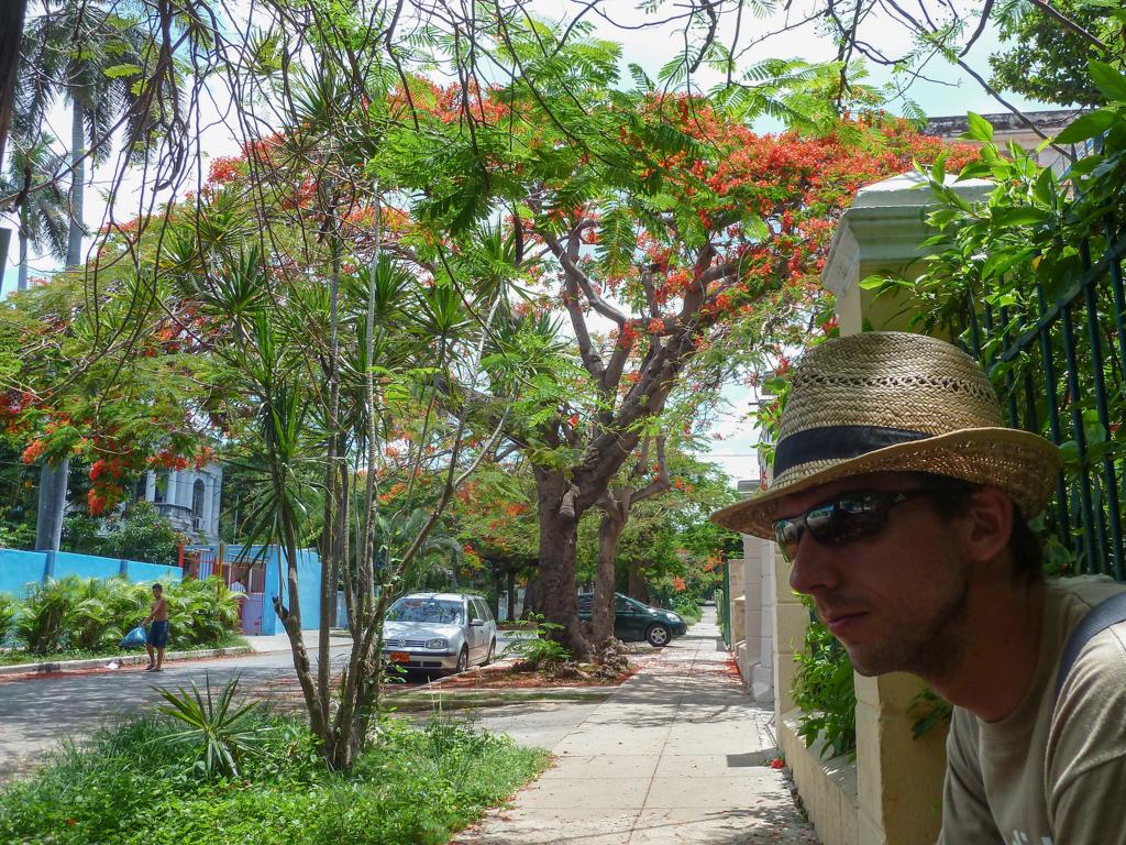 Varadero - Havannas Villen