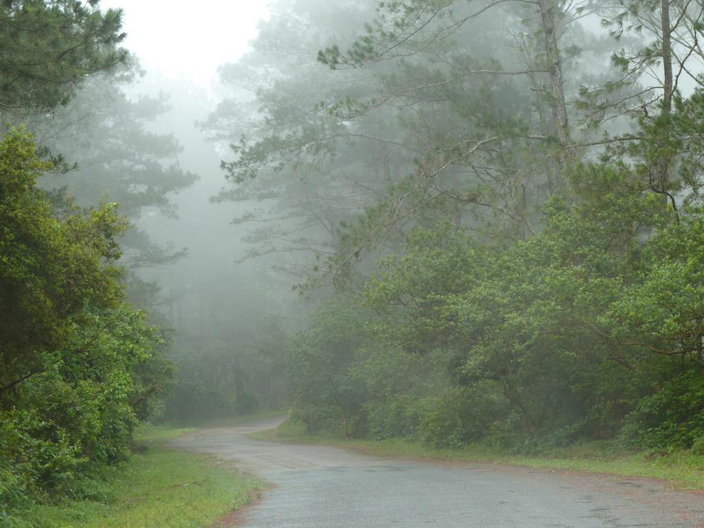 Weg zum Gran Piedra